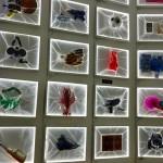 objets insollites de l'expo à la villa extraordinaire visite avec arts affaires